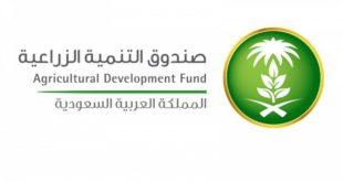 صندوق التنمية الزراعية السعودى