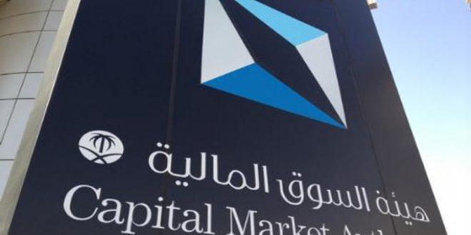 هئية السوق المالية