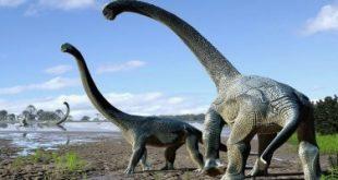مجموعة من العلماء يكتشفون فصيلة جديدة من الديناصورات في كندا